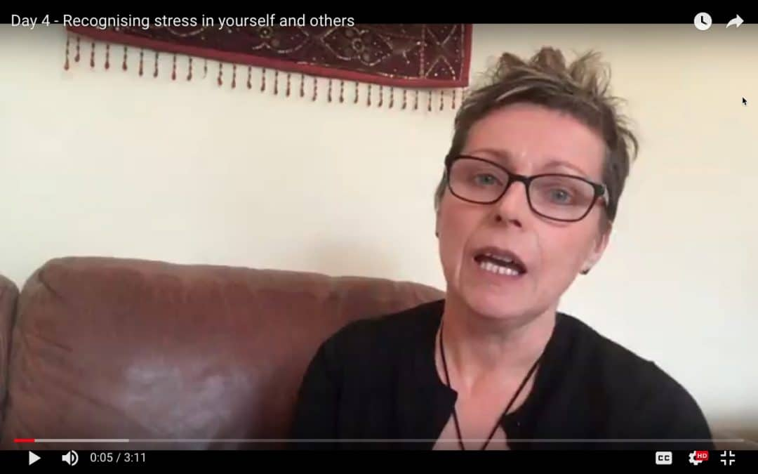 Day 4 – Recognising stress in yourself and others
